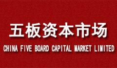 五板资本市场核心业务