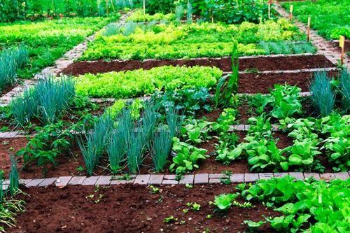 某农业企业:因上市需要收购智慧农业企业,地域不限